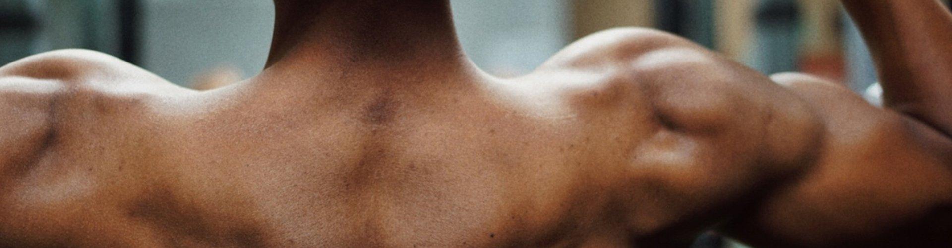 El hombro y la Rotura del Tendón Supraespinoso